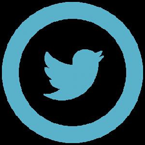 icon_twitter - copia