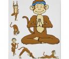 Aprendiendo a concentrarnos, o cómo domesticar al mono que hay en nosotros