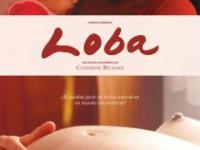 Una película imprescindible